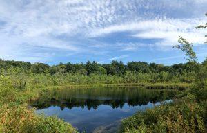 Boxford MA Lake